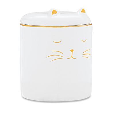 pote-em-ceramica-gato-branco